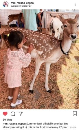 Child petting a deer in the petting zoo